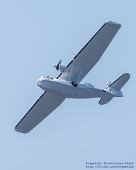 SOARING CATALINA AGAINST THE BLUE