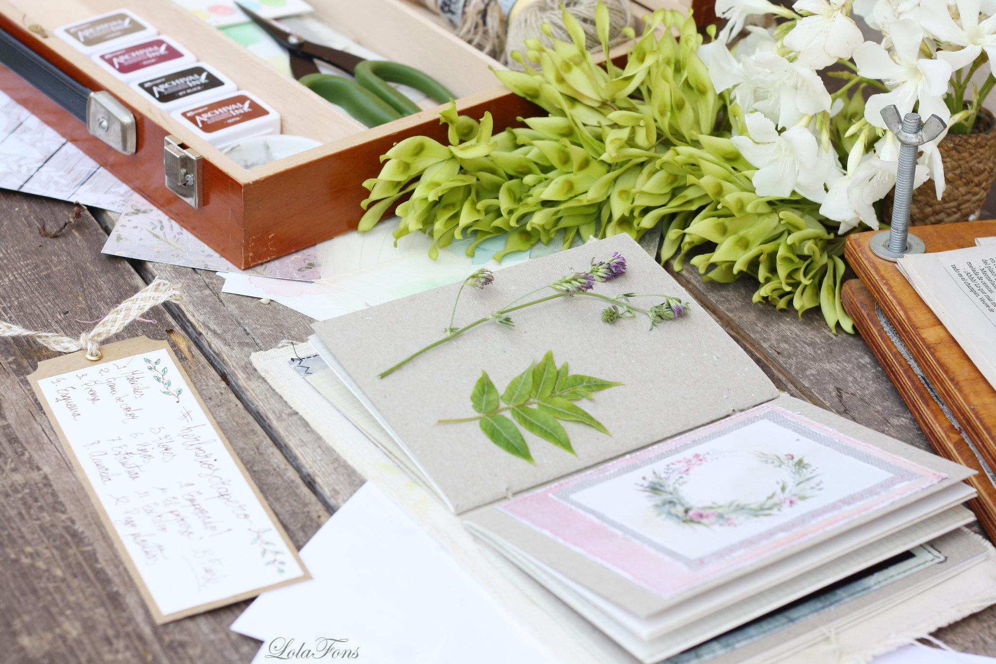 herbarium07