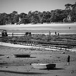 Photos des lecteurs | Hossegor Lac les parc à huitres d'Hossegor