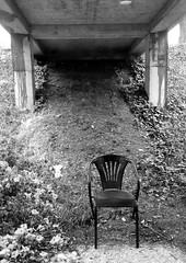 sitting beneath......2017-08-22