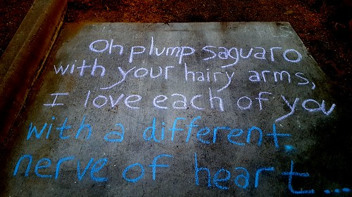 Line from Notes for the Cactus Poem by Michael Schmidt in the Malvern Plaza in the Broadmoor-Broadway Village Neighborhood. (O plump saguaro) (Urban Poetry Pollinators)