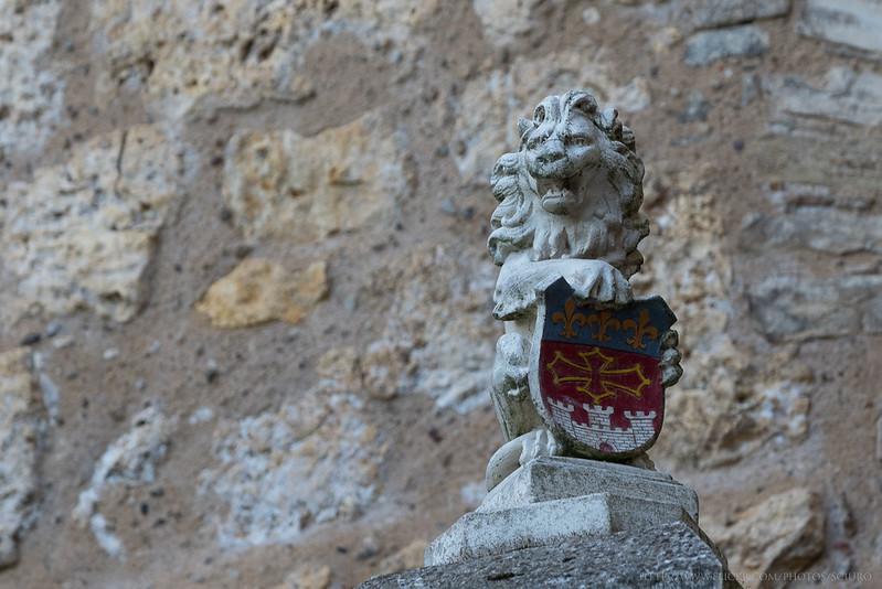 occitanie-nikon-2477