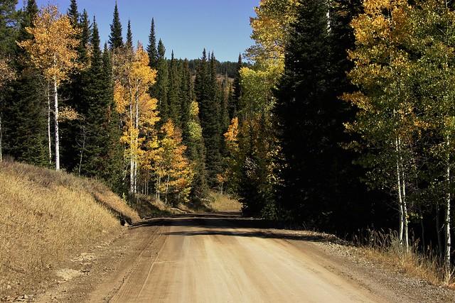 Autumn Roads