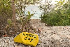 Tauchplatz Weber's Joy Curacao