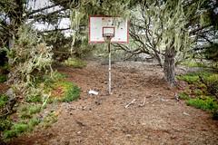 Abandoned Hoop