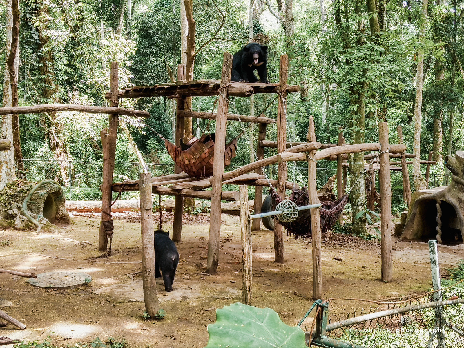 Kuang Si Bear Sanctuary
