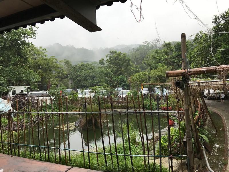 庭園中的池磄