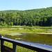 Wetlands, Delaware & Ulster Railroad