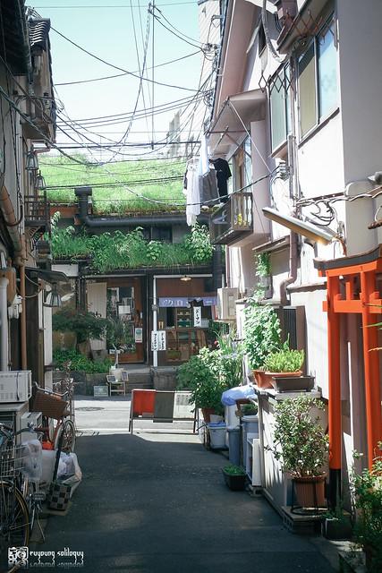 十年,京都四季 | 卷五 | 京都與我,有時還有關西 | 41