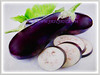 Solanum melongena (Brinjal, Eggplant, Aubergine, Terong in Malay)