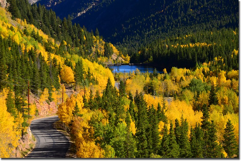 Fall colors, Guanella Pass, Colorado (29)
