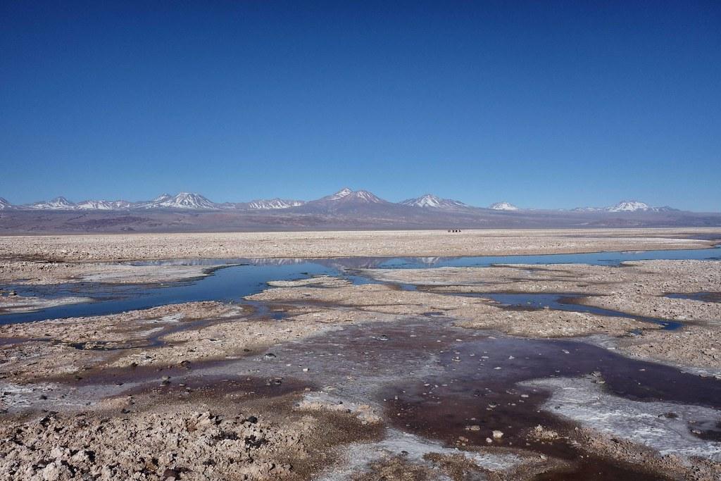 San Pedro Atacama - Piedras Rojas - Laguna Chaxa 4