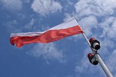 В Витебске будут изучать польский язык, правда, факультативно