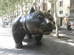 El Gato de Botero, Barcelona