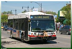 "Nova Bus LFS ""CTA"""