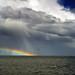 Arbroath Rainbow