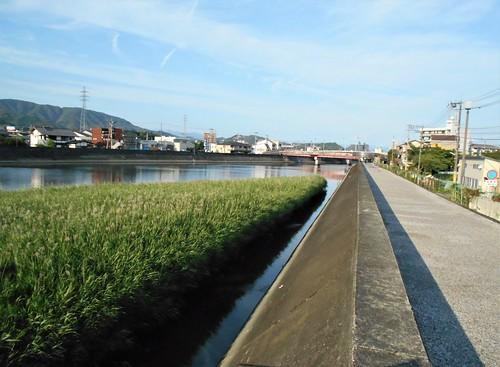 jp-kochi-arrivée (1)