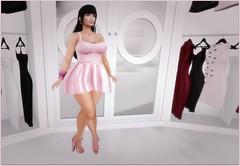 Lucie's Dream Closet