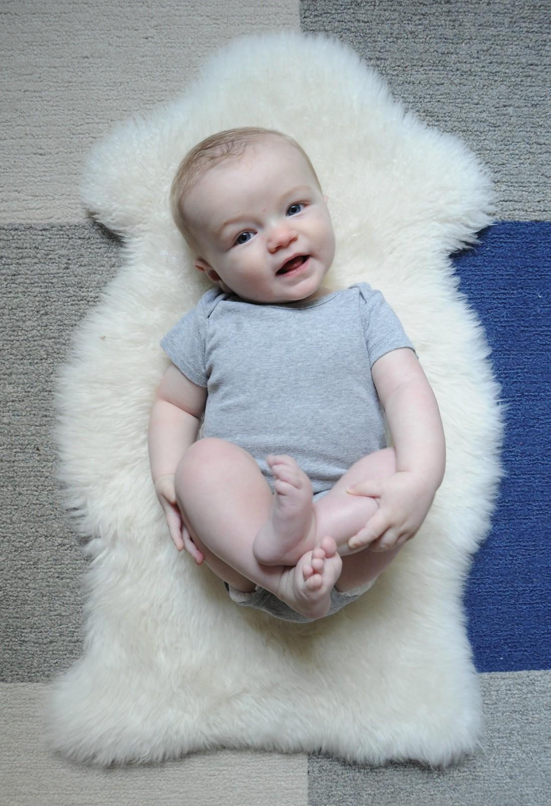 Otto 6-Month Update