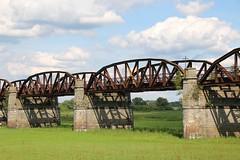 Eisenbahnbrücke, Elbe bei Kaltenhof