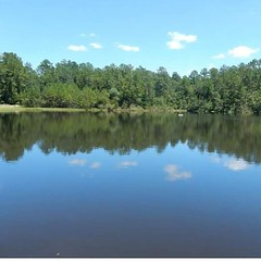 #AUCTION NOVEMBER 2! #Biloxi #MIssissippi info@national-auction.com Remarkable executive property on 30+/- manicured acres with a 10+/- acre lake. The property also includes a 2BR/1BA guest cottage. The main house (5BR/5BA) is china brick exterior, cerami