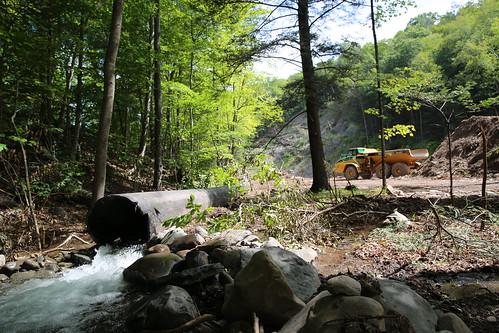 Van Hoagland Stream Project