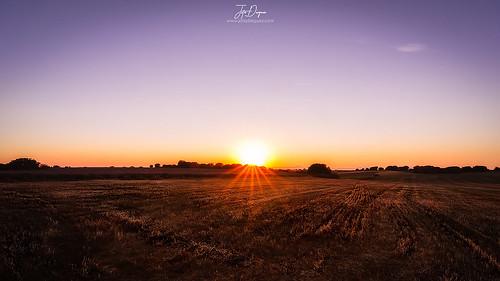 The fields of Castilla
