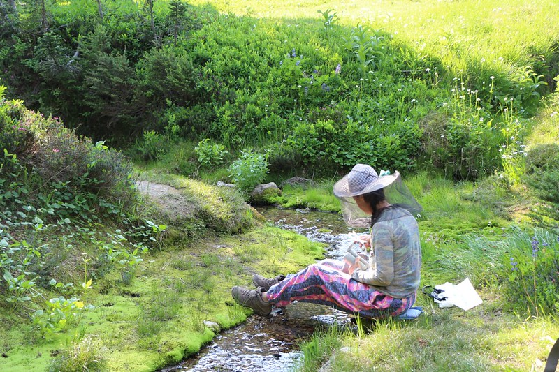 Vicki filtering water from the creek in the meadow at Buck Creek Pass