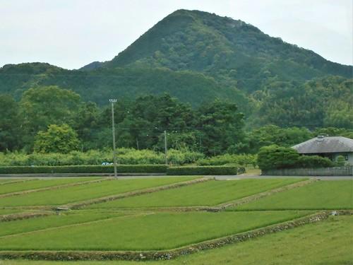 jp-uwajima-kubokawa (11)