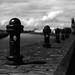FILM - Beside the Trent