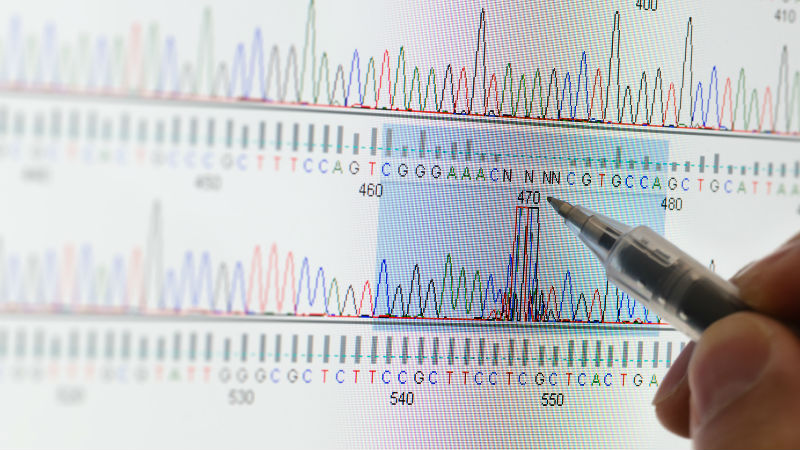 A computer screen renders a sequenced DNA sample
