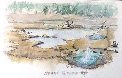 Geysers in Back Basin of Yellowstone - almost a disaster when the white pen exploded due to altitude changes, but somewhat appropriate for a geyser 😜#watercolor #sketch #pleinair #yellowstonenationalpark