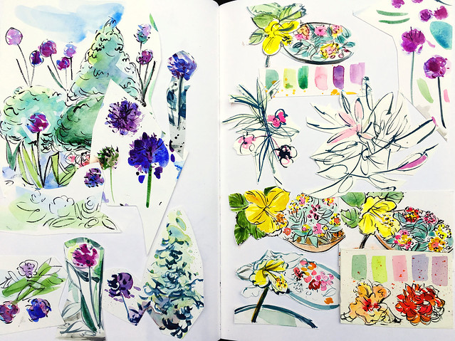 Sketchbook collage:  some of my recent garden Ilustration leftovers