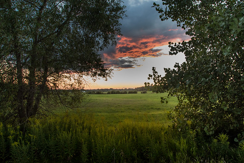 canoneos5dmarkiv sunset atardecer campo cloud drama uplit mi michigan midland summer field 2017 august verano agusto weeds trees breakingthrough