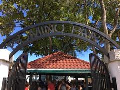 Domino Park Little Havana
