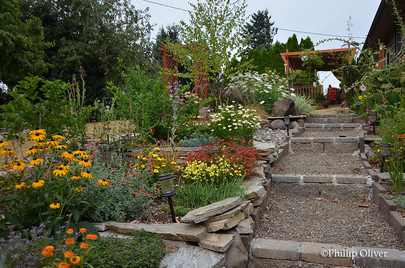 terraced-garden-3