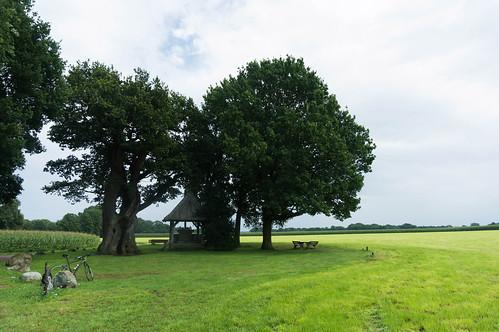 Kroezeboom, Fleringen