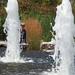 Water Waif
