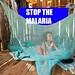 Small photo of MALARIA
