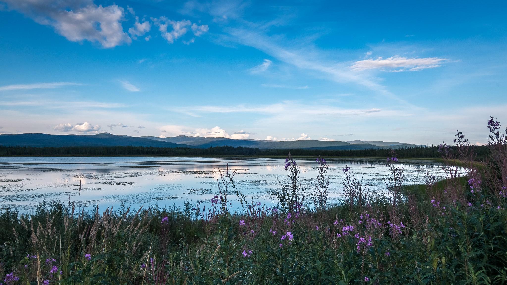 Lac Gravel - Yukon - [Canada]