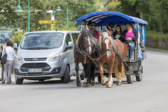 horsepowers