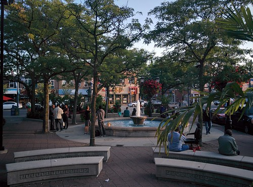 Looking out at the Danforth on a warm September evening #toronto #thedanforth #greektown #alexanderthegreat #alexanderthegreatparkette #danforthavenue #evening