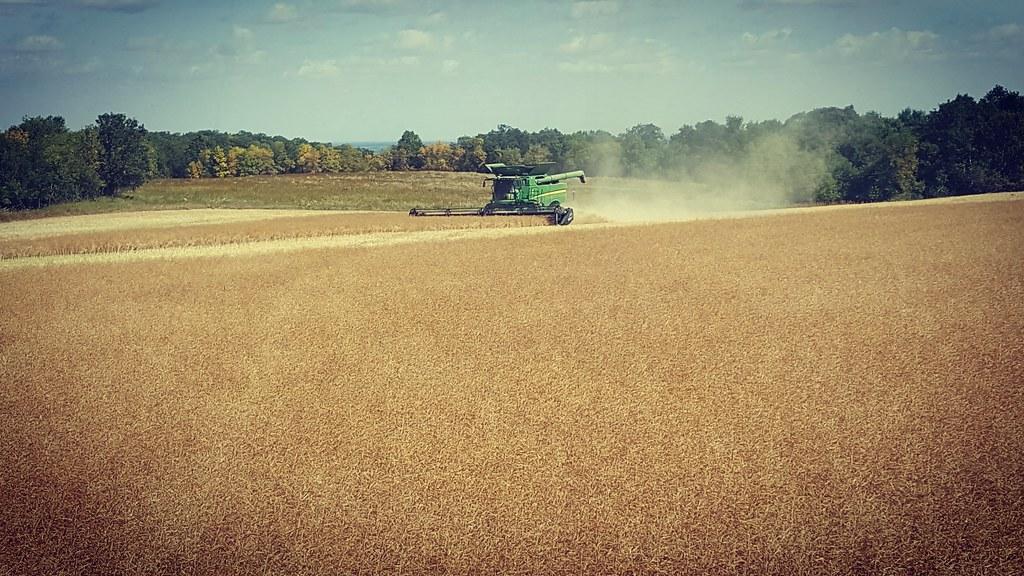 Schemper 2017 Eastern North Dakota Harvest