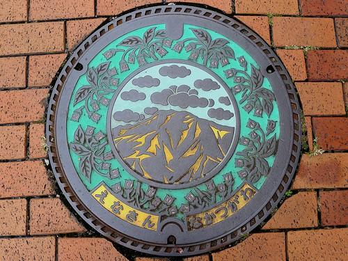 Nakatsugawa Gifu, manhole cover 2 (岐阜県中津川市のマンホール2)
