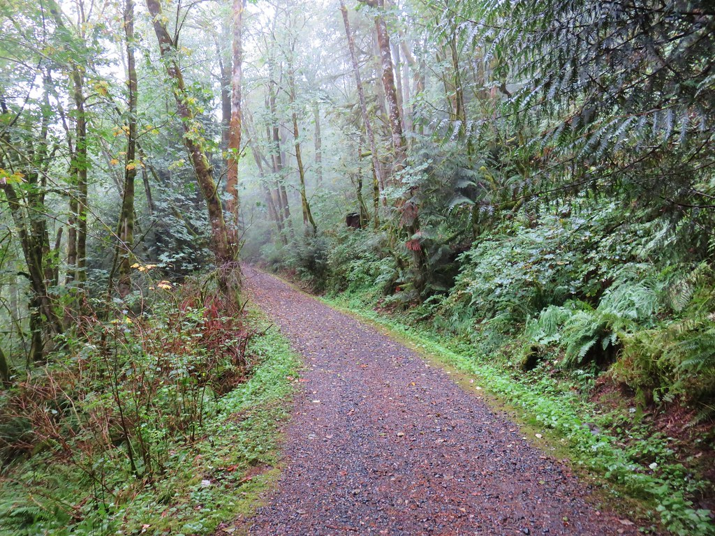 """Trail """"G"""" in Oxbow Park"""