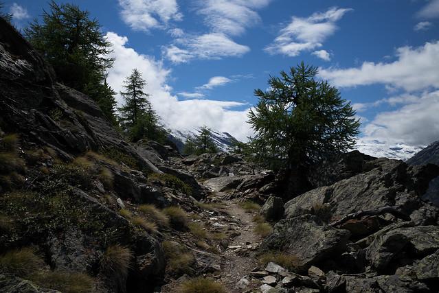 flat terrain @ Europaweg Grächen-Zermatt