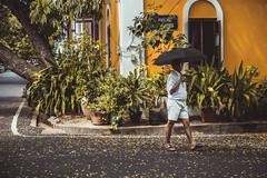 Sun's Umbrella - Pondicherry