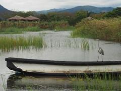 Suncheon Wetland I