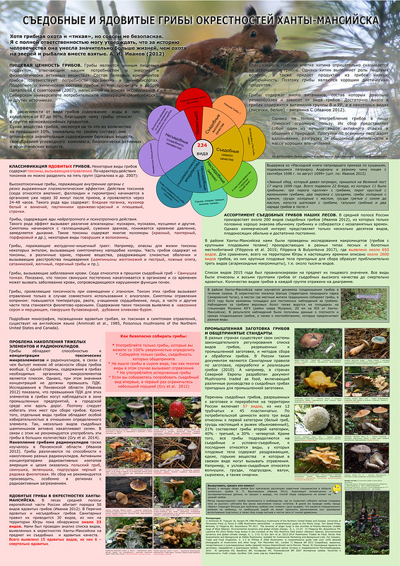 Poster prepared to Mushroom Festival in Museum of Nature and Man in Khanty-Mansiysk