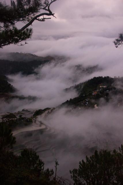 Fogfall